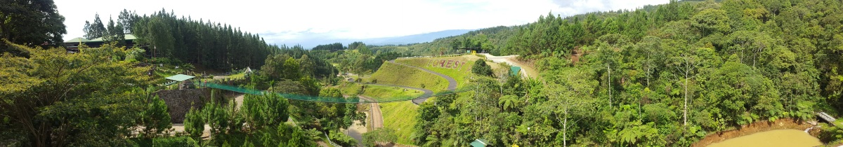 Dahilayan Forest Park – Manolo Fortich,Bukidnon